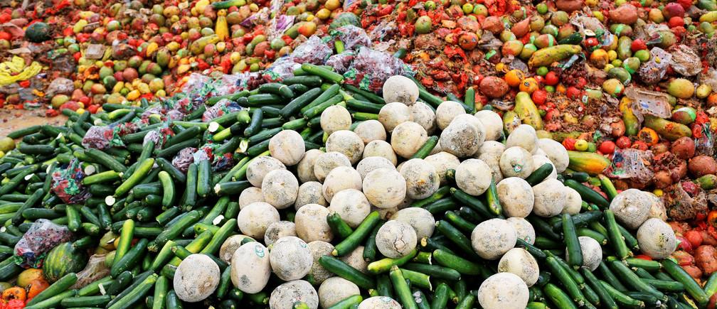 Hàn Quốc tái chế đến 95% thực phẩm thừa
