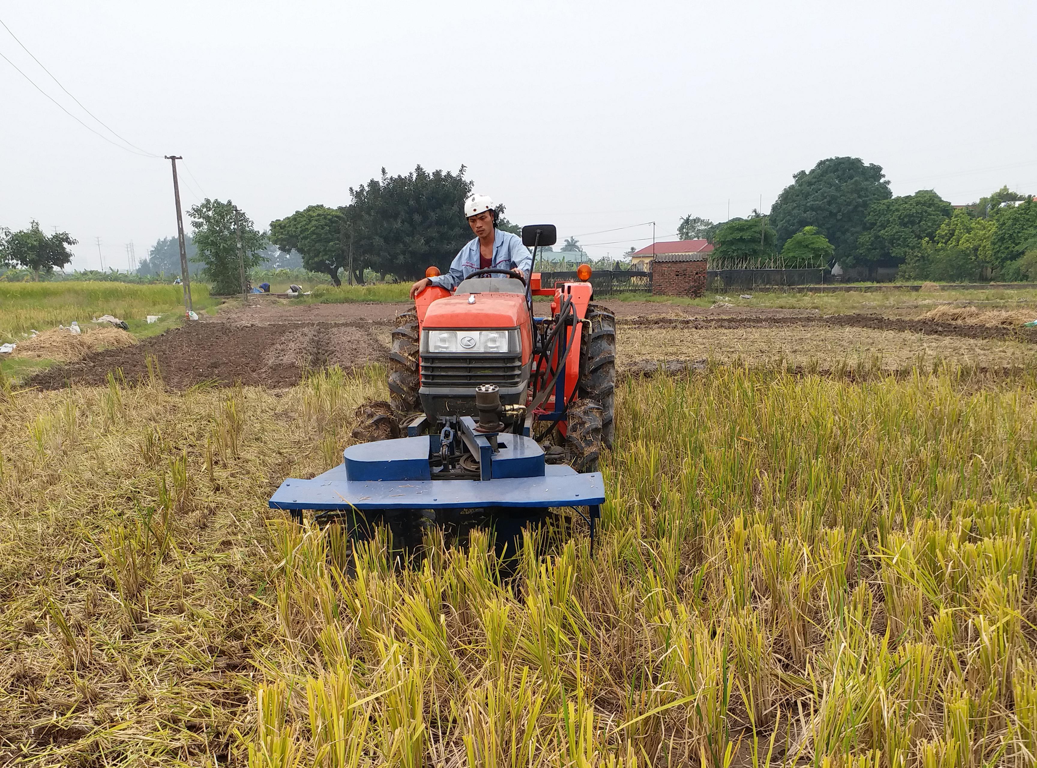Máy cắt băm gốc rạ trên cánh đồng ở Sơn Đông, Sơn Tây.