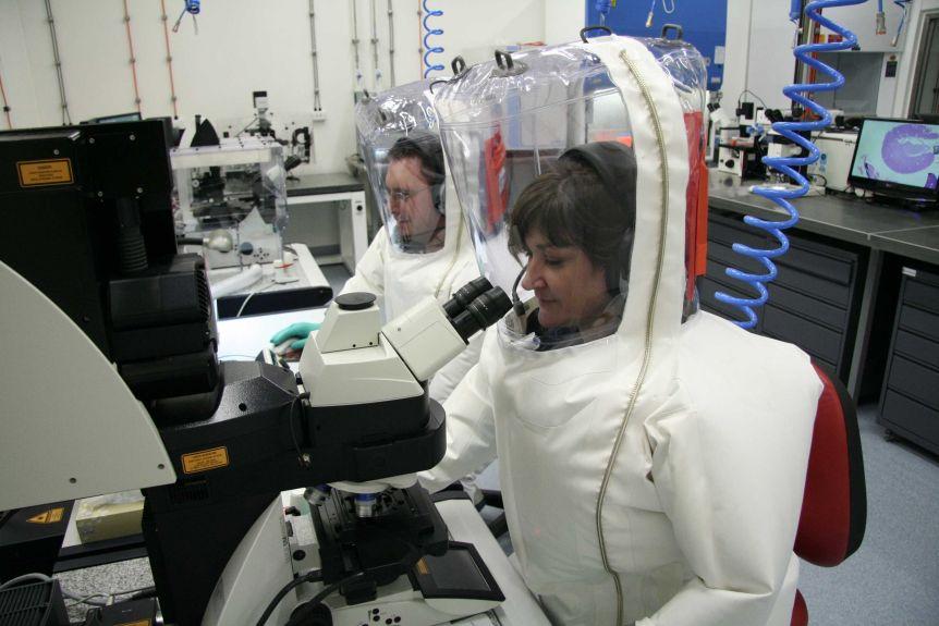 Các nhà khoa học Úc là những người đầu tiên tái tạo được coronavirus trong phòng thí nghiệm bên ngoài Trung Quốc. Hiện nay ở Úc, chỉ những phòng thí nghiệm có nghiên cứu liên quan đến COVID-19 mới mở cửa hoạt động. Nguồn: CSIRO