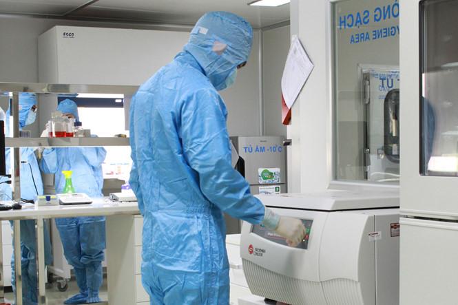 Chiết xuất, bảo quản tế bào gốc chờ ghép cho bệnh nhân. Ảnh: BV Vạn Hạnh.