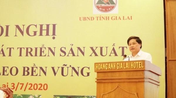 Thứ trưởng Bộ NN&PTNT Lê Quốc Doanh phát biểu chỉ đạo tại Hội nghị Thúc đẩy phát triển chanh leo bền vững