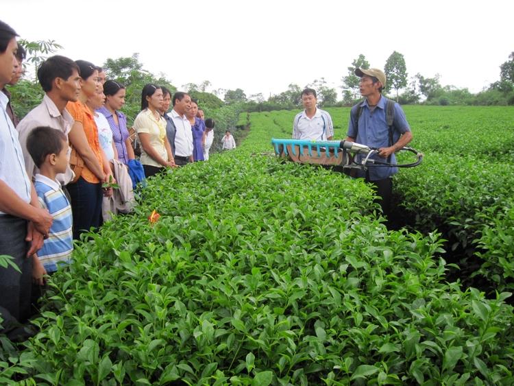 Ứng dụng KH&CN vào sản xuất nông nghiệp. Ảnh: KTVN