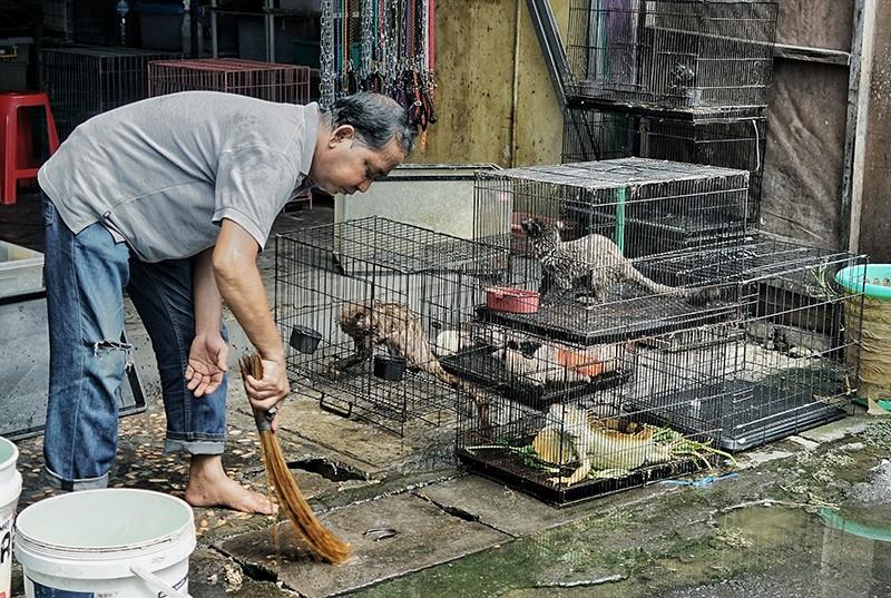 Chợ bán thịt thú rừng ở Bali (Indonesia)được xem là những điểm nóng phát tán bệnh dịch, Ảnh: Amilia Roso/The Sydney Morning Herald/Getty).