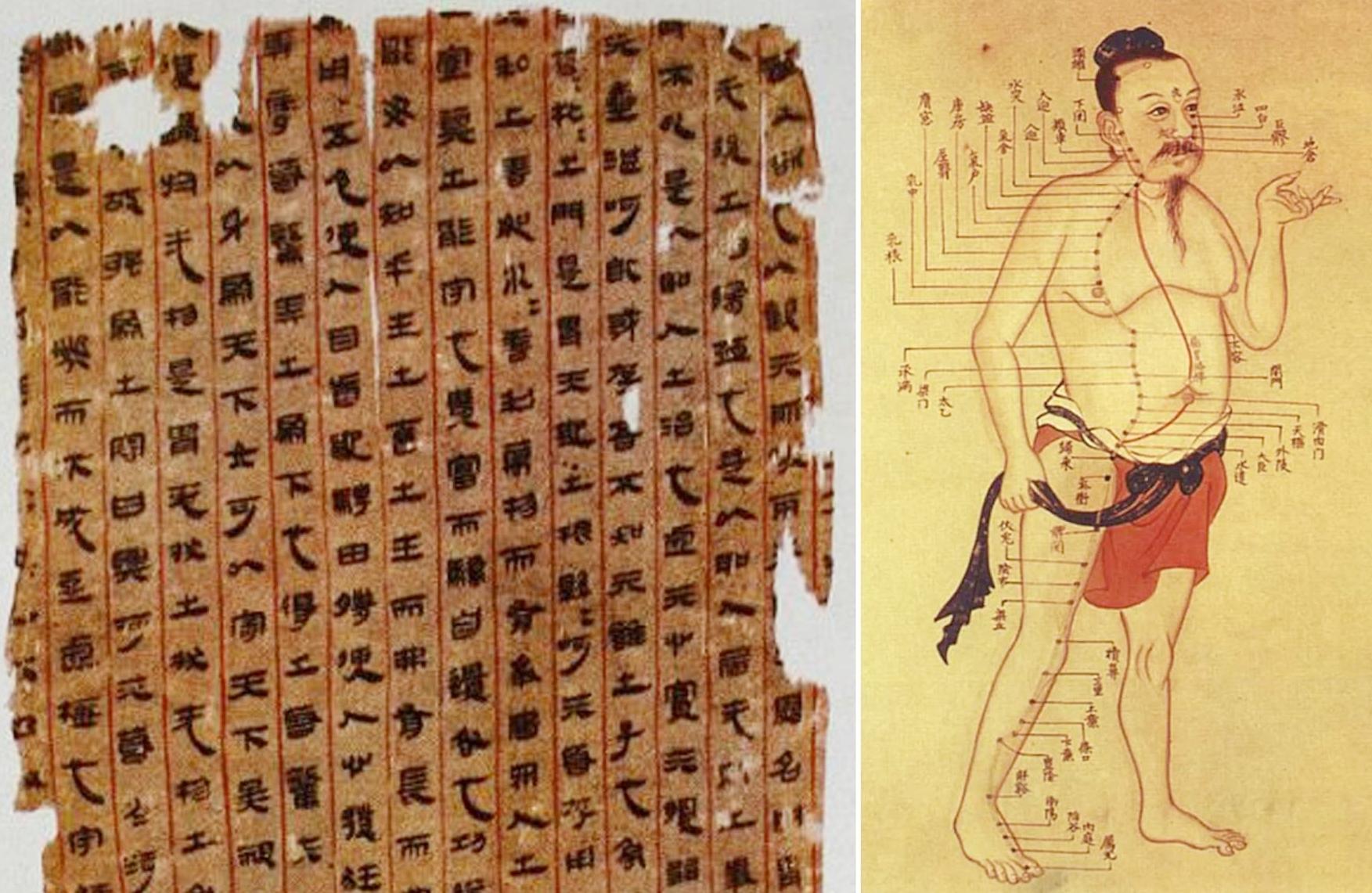 Tài liệu giải phẫu người được tìm thấy trong mộ Tân Truy phu nhân sống trong thời nhà Hán của Trung Quốc. Ảnh: Ancient Origins.