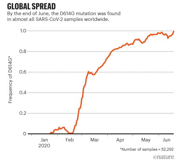 Lượng bệnh nhân mang đột biến D614G tăng ở mức báo động trong thời gian từ tháng 2 tới tháng 6 vừa qua (lượng mẫu: 52.300 người). Nguồn biểu đồ: Nature.