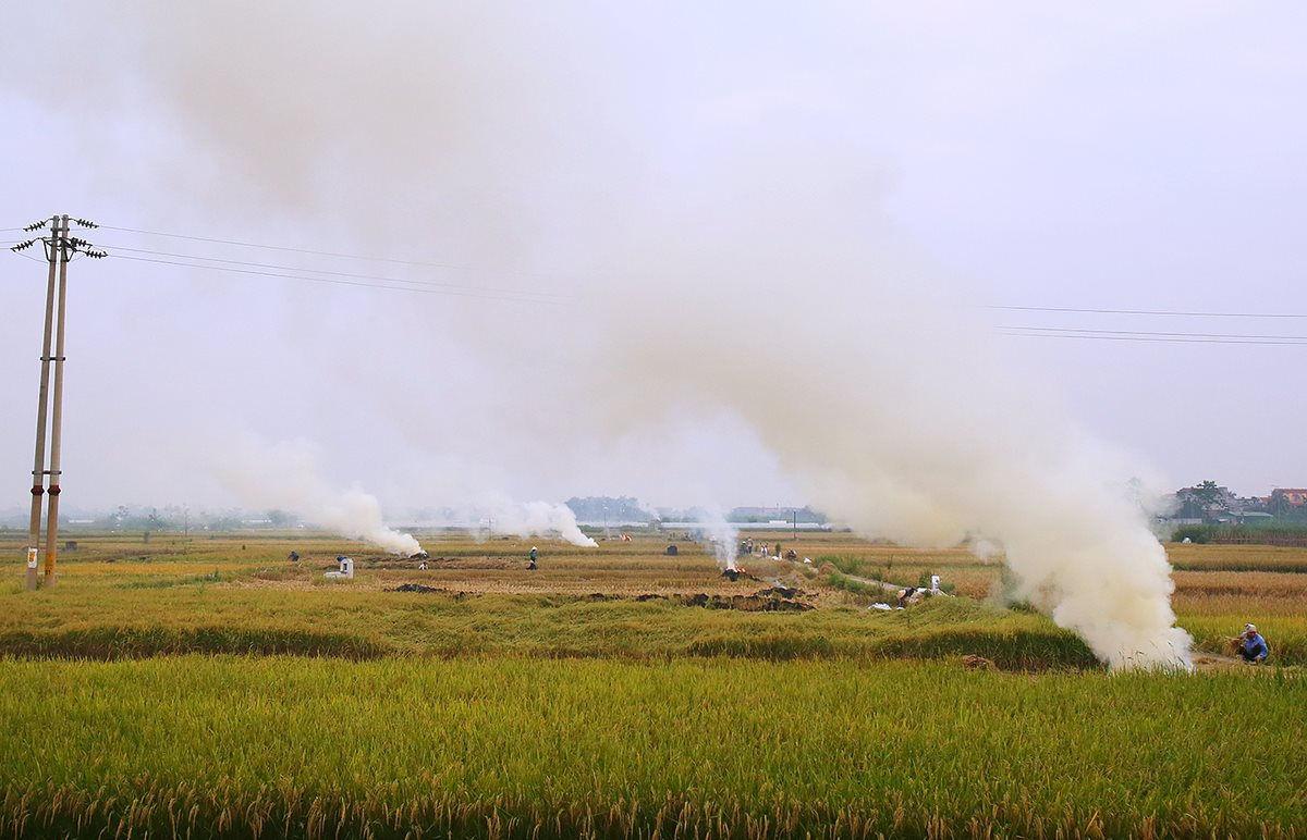 Tình trạng đốt rơm rạ đã diễn ra phổ biến nhiều năm ở Hà Nội