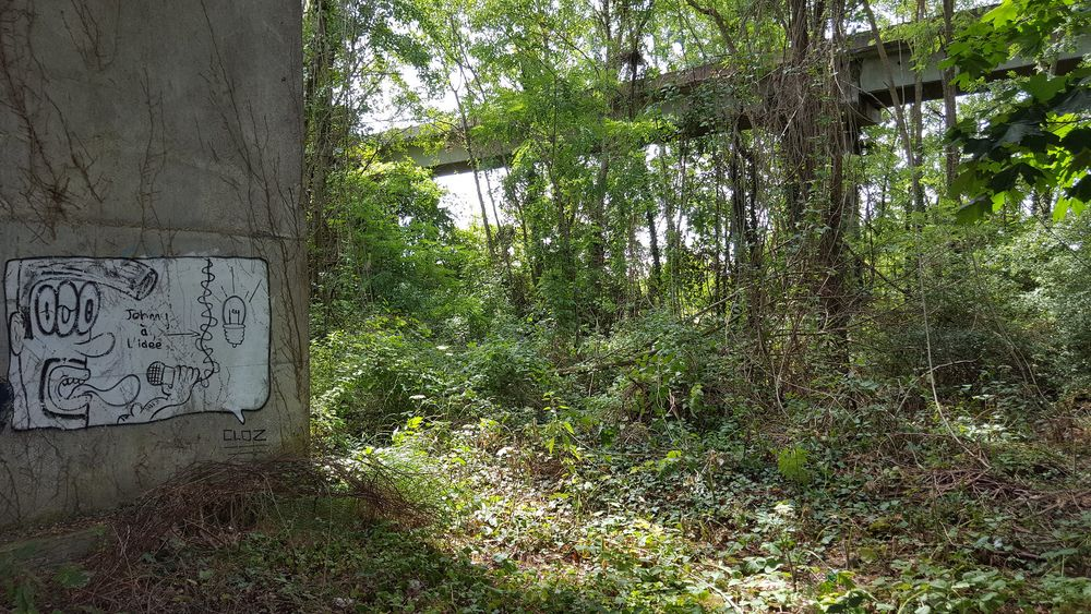 Một đoạn đường ray tại Gometz-le-Châtel bị cây cỏ bao phủ. Ảnh: Flickr.
