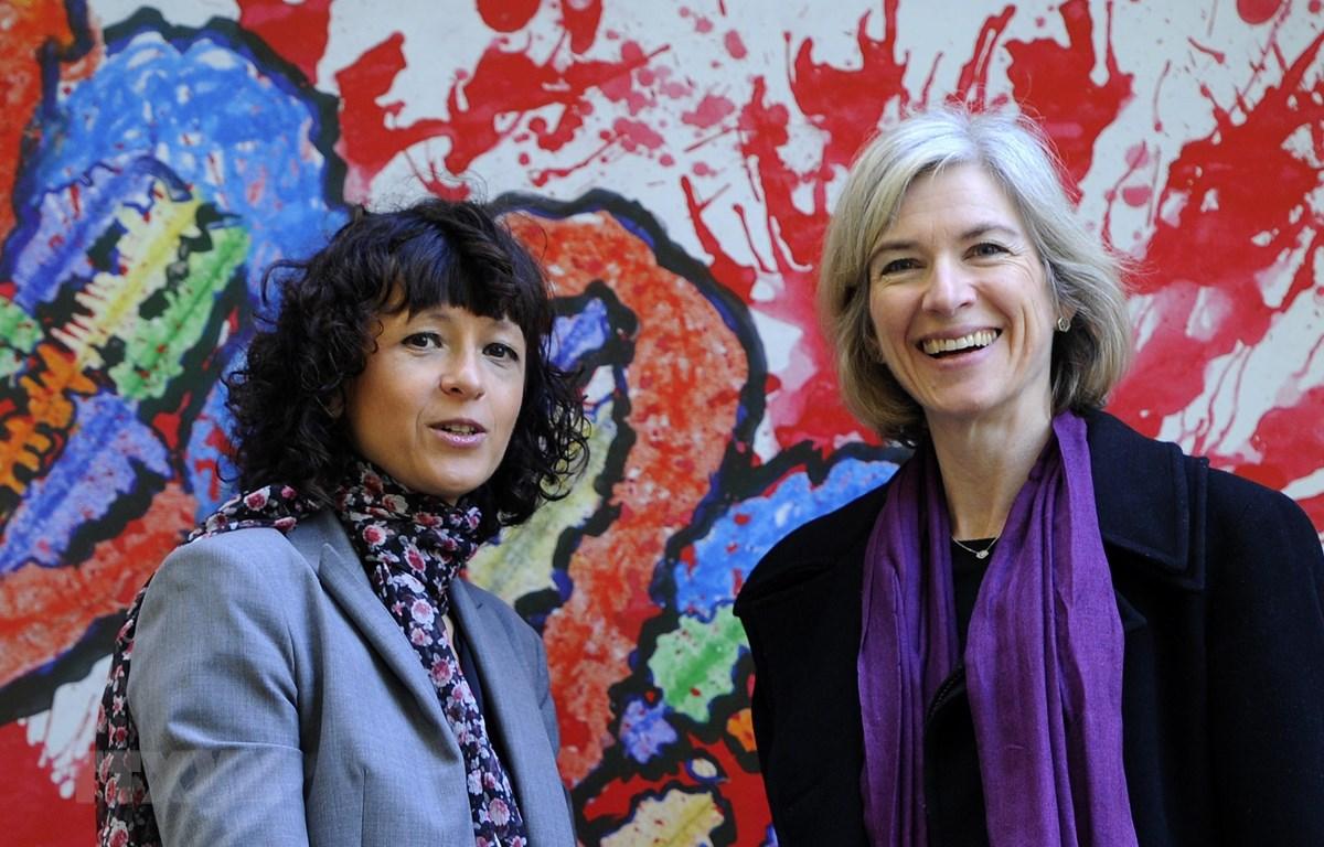 Các giáo sư Emmanuelle Charpentier (trái) và Jennifer Doudna.