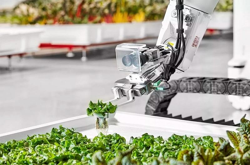 Áp dụng công nghệ cao trong sản xuất nông nghiệp