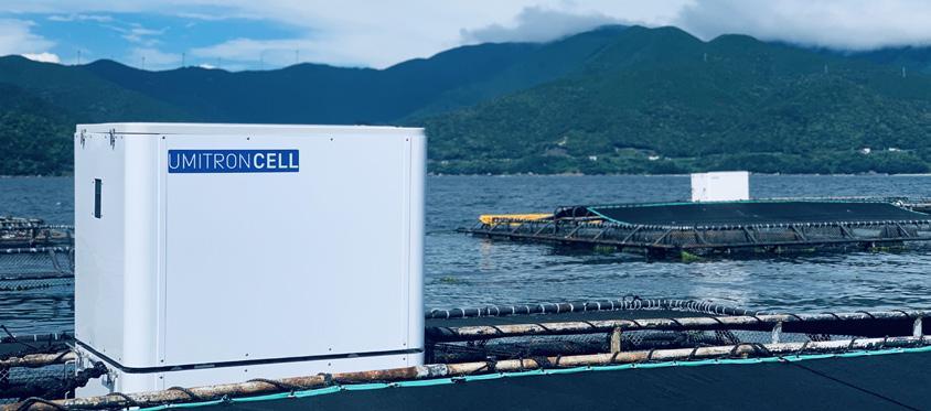 UMITRON, startup đang nổi tại Singapore về công nghệ nuôi trồng thủy sản.