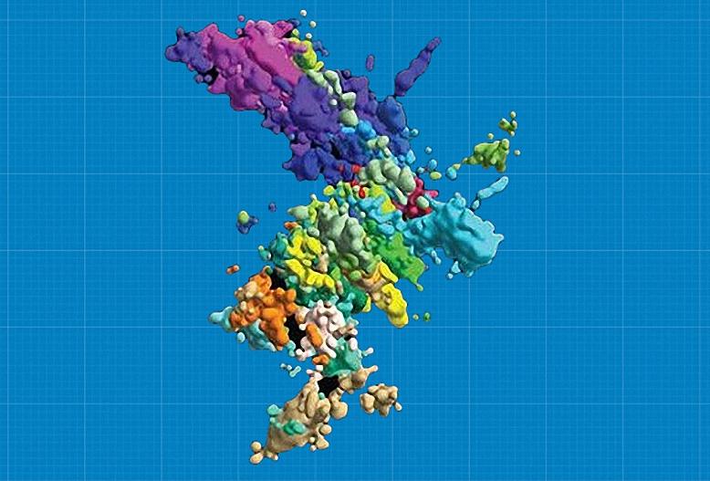 Hình dạng 3D của nhiễm sắc thể. Ảnh: Xiaowei Zhuang.