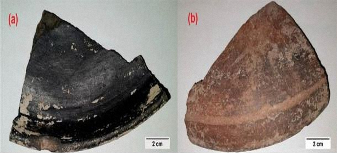 Các mảnh gốm vỡ với lớp phủ vật liệu nano bên ngoài. Ảnh: Nature.