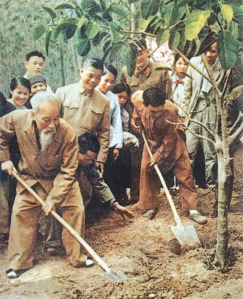 Bác Hồ trồng cây đa tại xã Vật Lại, Ba Vì, Hà Tây (nay là Hà Nội) ngày 16-2-1969. Ảnh: Tư liệu