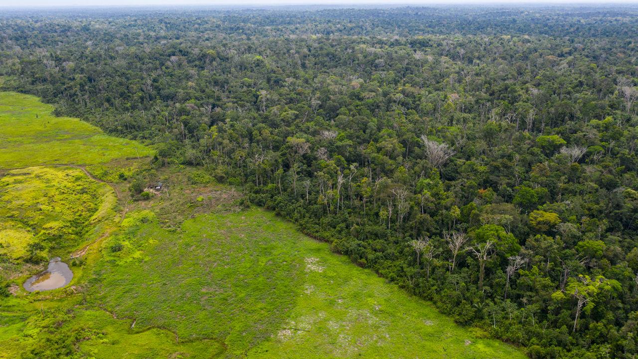 """Brazil có vệ tinh """"nhà làm"""" đầu tiên theo dõi rừng Amazon"""