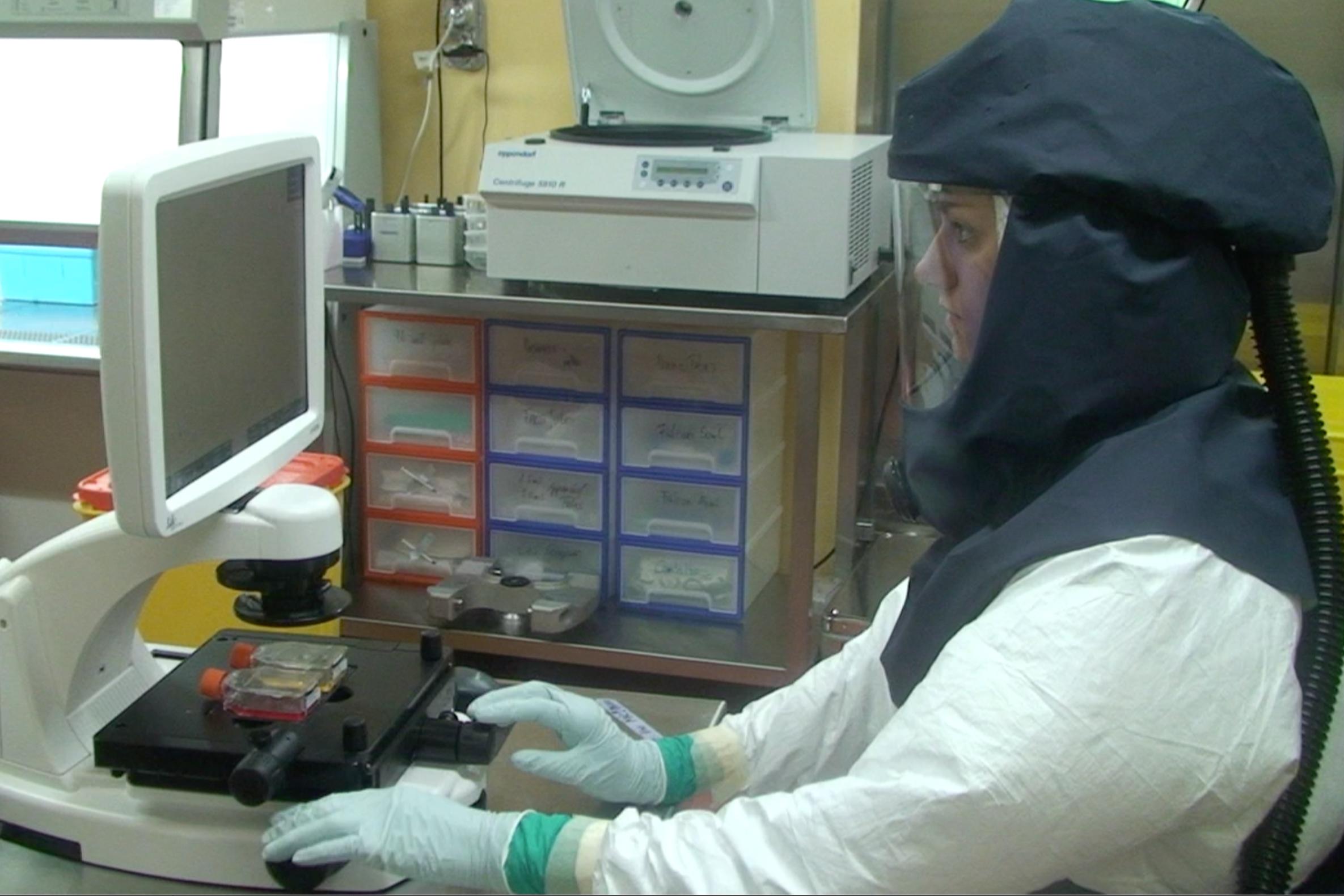 Làm việc tại phòng thí nghiệm an toàn sinh học tại Viện virus và miễn dịch học thuộc Đại học Bern, Thụy Sỹ.   Nguồn: ĐH Bern