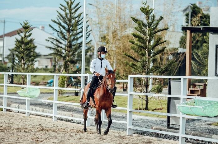 Khu luyện tập cưỡi ngựa Ả Rập độc đáo ở Thành phố Cà phê.