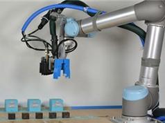 Robot biết 'đẻ con' và tiến hóa?