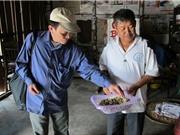 Bảo tồn các bài thuốc hay của đồng bào dân tộc Tây Nguyên