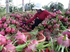 Khoa học công nghệ - Giải pháp trọng yếu tái cơ cấu nông nghiệp