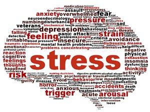 20 sự thật không thể tin nổi về stress