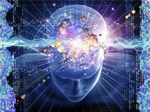 Những điều ít biết về khoa học não bộ