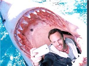 Du khách tử nạn vì... selfie nhiều gấp 1,5 lần do bị cá mập cắn