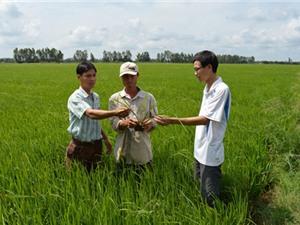 Ứng dụng khoa học vào phát triển kinh tế vùng đồng bào Khmer