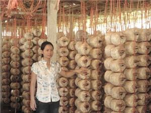 Nam Định - Cần ứng dụng KH&CN phát triển các sản phẩm chủ lực