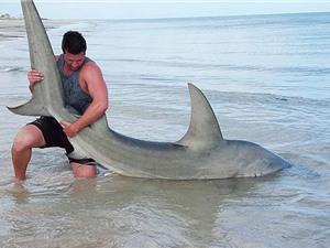 """Trai trẻ tay không bắt 200 con cá mập """"khủng"""""""