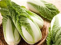 Kỹ thuật trồng cây cải thảo đơn giản, cho năng suất cao