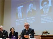 Nhóm các nhà khoa học Nhật Bản, Trung Quốc, Ireland đoạt giải Nobel Y học