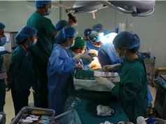 Thực hiện thành công hai ca ghép gan từ người cho gan sống