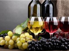 Rượu vang đỏ tốt cho bệnh nhân đái tháo đường type 2