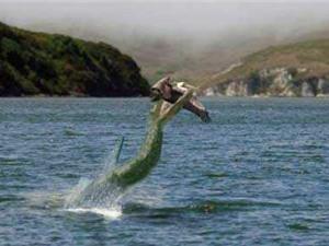 Chuyện ly kỳ về quái vật hồ Nix ở Anh