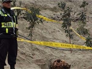 Phát hiện một xác ướp phụ nữ có niên đại 2.000 năm tại Peru
