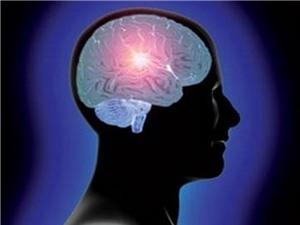 Não lớn đồng nghĩa với thông minh?