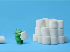 Danh sách các smartphone được cập nhật hệ điều hành Android 6.0