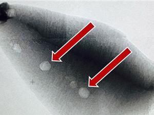Phát hiện chấn động: Sự sống có trên Trái Đất 4,1 tỷ năm trước