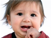 Con người có thể mọc răng không giới hạn