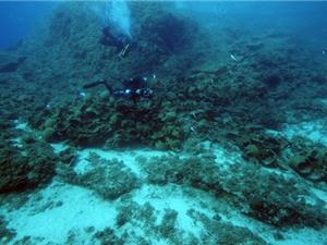 Phát hiện 22 xác tàu cổ đắm gần đảo Fourni, Hy Lạp