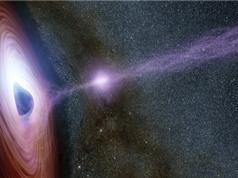 Quầng hào quang rực sáng trên hố đen có tác dụng gì?
