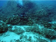 Nghĩa địa tàu cổ đại ở Địa Trung Hải