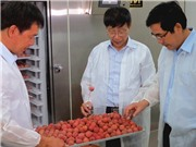 Công nghệ bảo quản sau thu hoạch CAS: Bàn đạp cho ngành xuất khẩu nông sản Việt