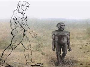 """Người cổ đại ở Indonesia bị thu nhỏ kích thước vì """"hiệu ứng đảo"""""""