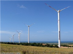 """Điện gió sẽ là """"đặc sản"""" của Quảng Trị"""