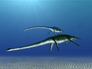 Khủng long biển cổ đại bơi như chim cánh cụt