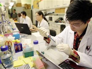 Thực trạng báo động về độ tin cậy của các nghiên cứu khoa học
