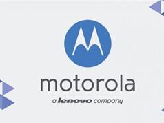 """Lenovo chuẩn bị """"khai tử"""" thương hiệu Motorola khỏi thị trường smartphone"""