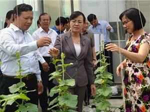TP.HCM đầu tư mạnh cho phát triển công nghệ sinh học