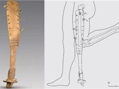 Phát hiện chân giả 2.200 năm tuổi trong mộ cổ ở Trung Quốc